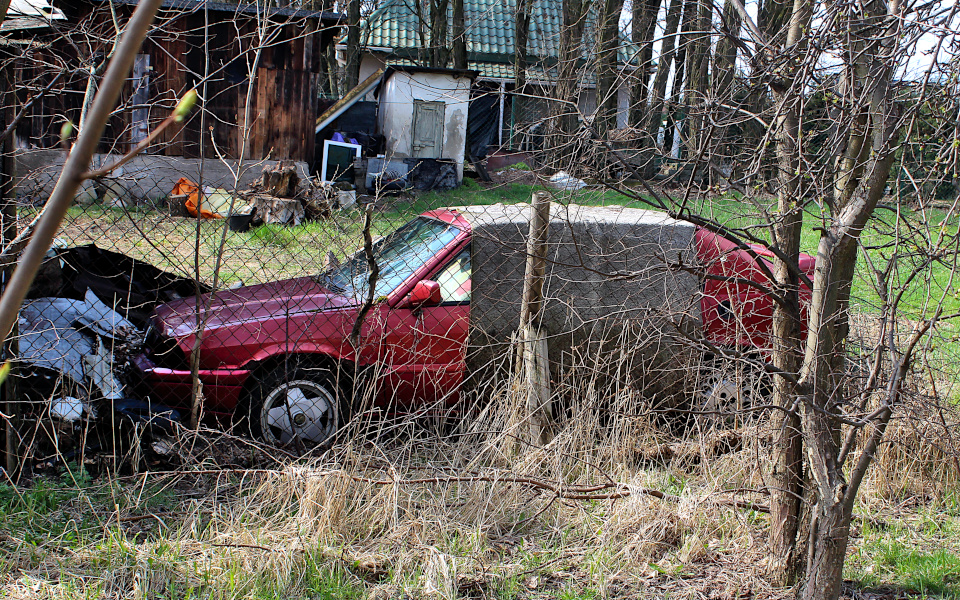 Jajeczko w Gracie - Alfa Romeo 33